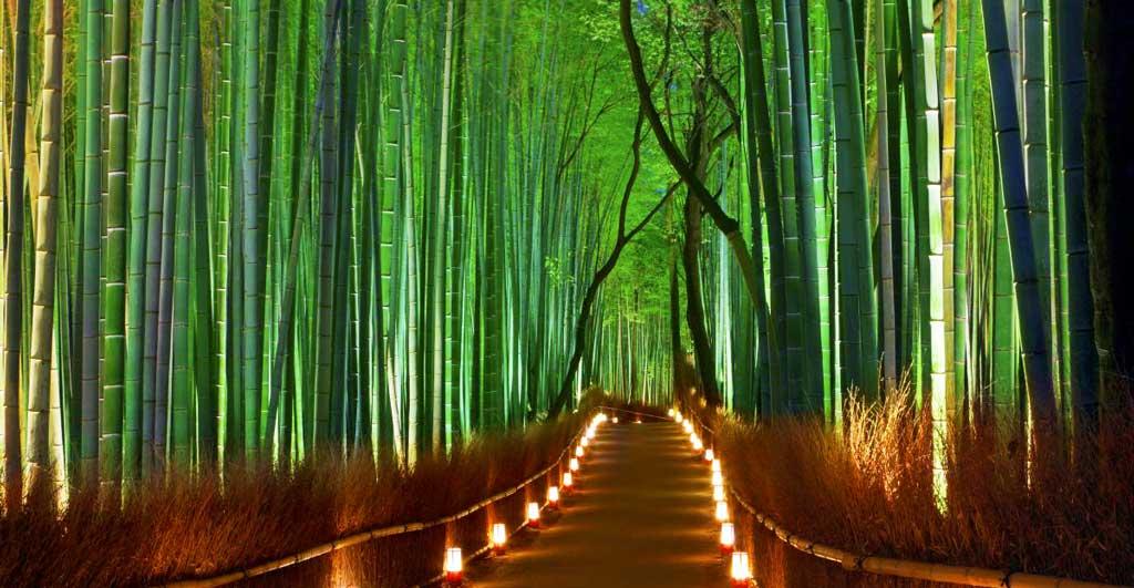 Arashiyama-G-06