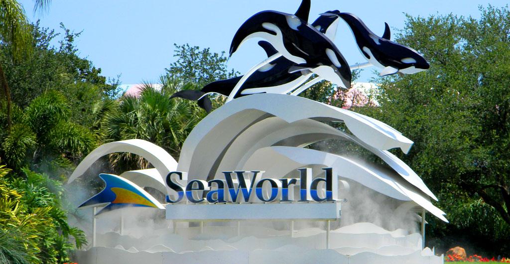 SeaWorld-00